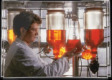 pet-mastermind-laboratory